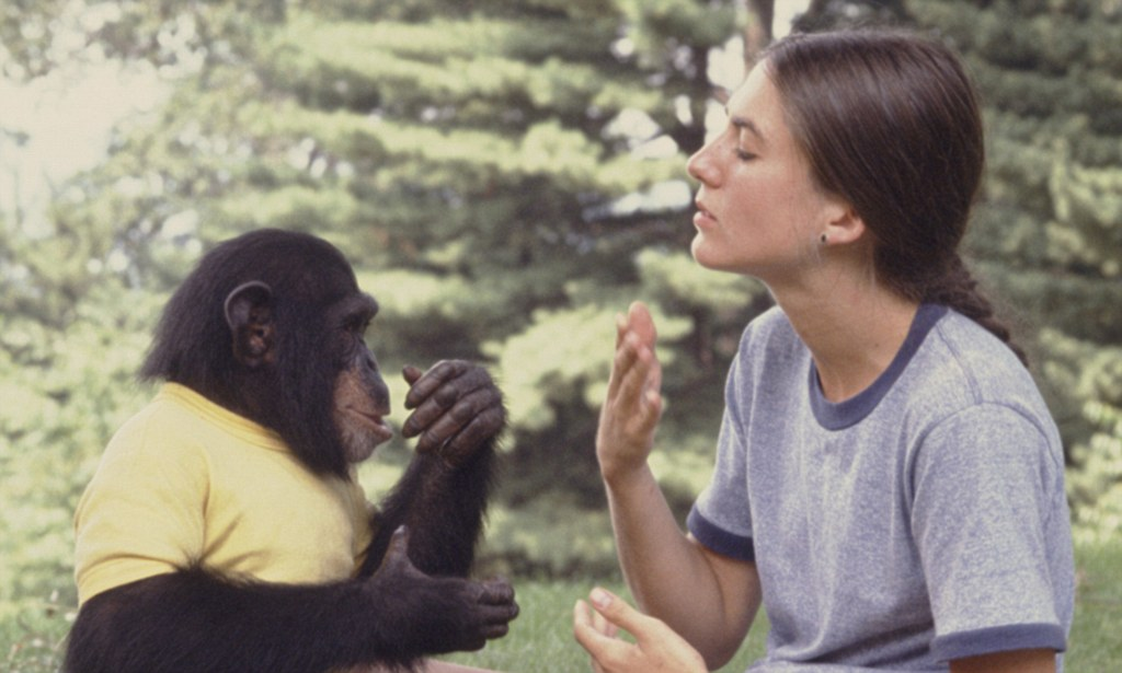 Nude moms and chimps